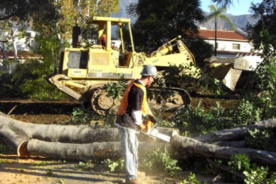 Magnum Land Clearing, Inc  Contract Services